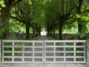 A gated and tree lined driveway.