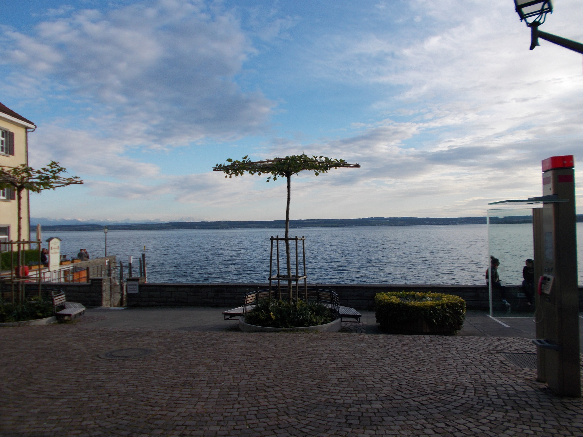 A wide shot looking out of a large lake with a decorative tree in the foreground taken in Meersburg, Germany.