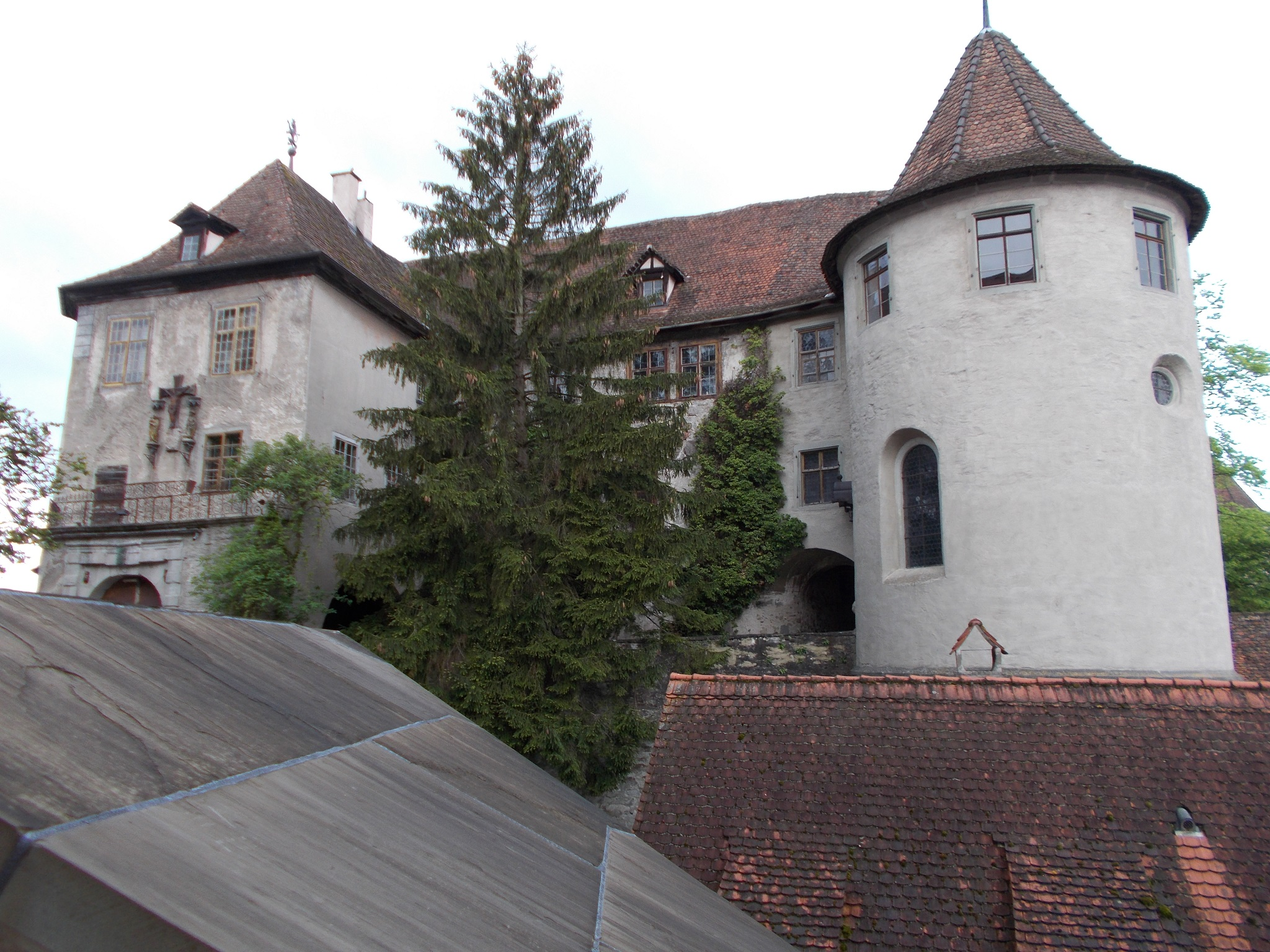 A snapshot of a well maintained castle with a huge tree in the foreground. Meersburg, Germany.