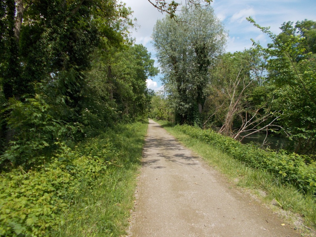 An arrow straight bike pathway alongside a shallow canal, trees on either side.
